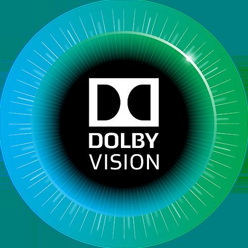 B_0714_Dolby_Vision_Logo_3