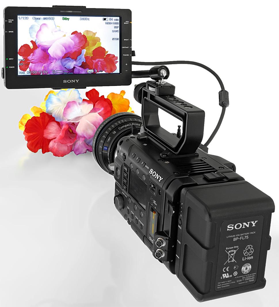 B_0313_Sony_F55_TBL_1_Monitor