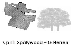 B_0508_Spalywood_Logo