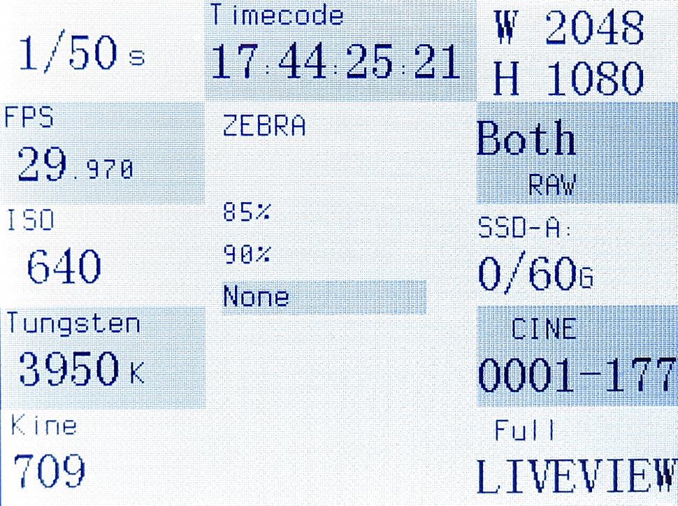 B_0713_Kineraw_Menue_int_03_Zebra