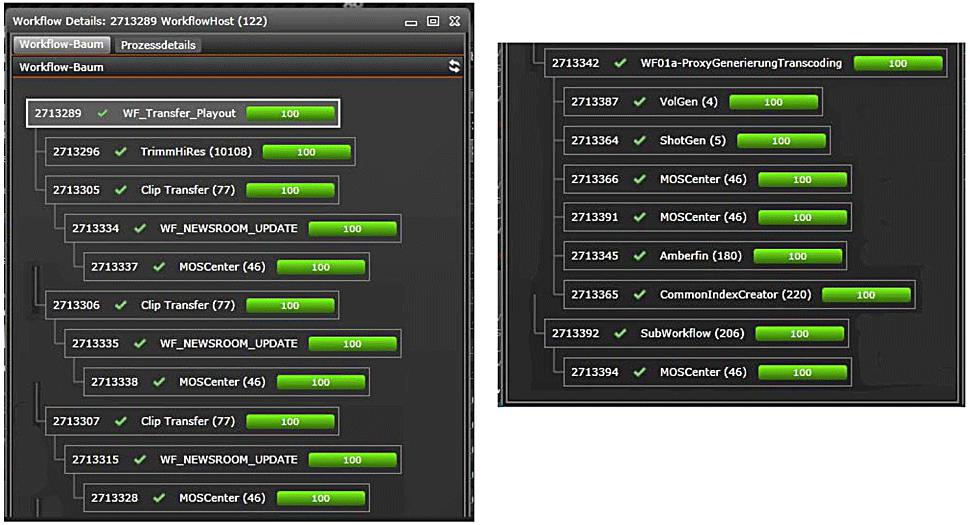 B_0812_SWR_G_Dia_MAM_Workflow_Detail_2