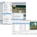 Flip4Mac: Infinity Component