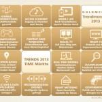 Medien-Trendreport 2013 von Goldmedia