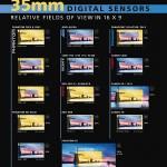 Sensorgrößen digitaler Kameras im Vergleich zu Super-35