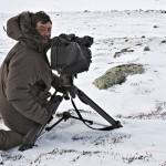 Menschen und Moschusrinder: Winter-Doku mit P2