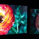 NAB2014: Dolby Vision — mehr Bildqualität beim Endkunden