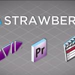 IBC2012: Projektverwaltung mit Strawberry