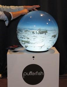 B_IBC15_Pufferfish