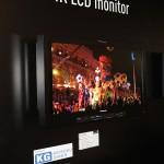 NAB2013: Panasonic kündigt neue VariCam und 4K-LCD-Monitor an
