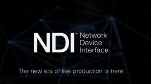 NDI, Logo