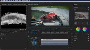 Canon, C200, Screenshot, Premiere, Lumetri
