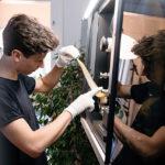Silbersalz: Neues Filmlabor in Stuttgart