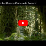 Demomaterial Blackmagic Pocket Cinema Camera
