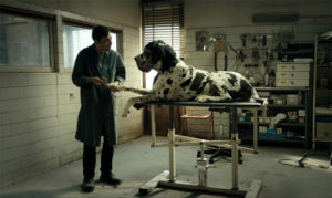 »Dogman«, European Film Awards 2018