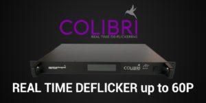 Antelopes ganzer Stolz: Colibri Deflicker
