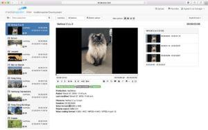 Darstellung unterschiedlicher Bild-Seitenverhältnisse für Video-Assets