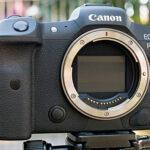 Praxistest Canon R5: Zu viel erwartet?