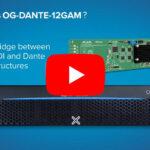 Aja: OG-Dante-12GAM für Audio-IP-Netzwerke